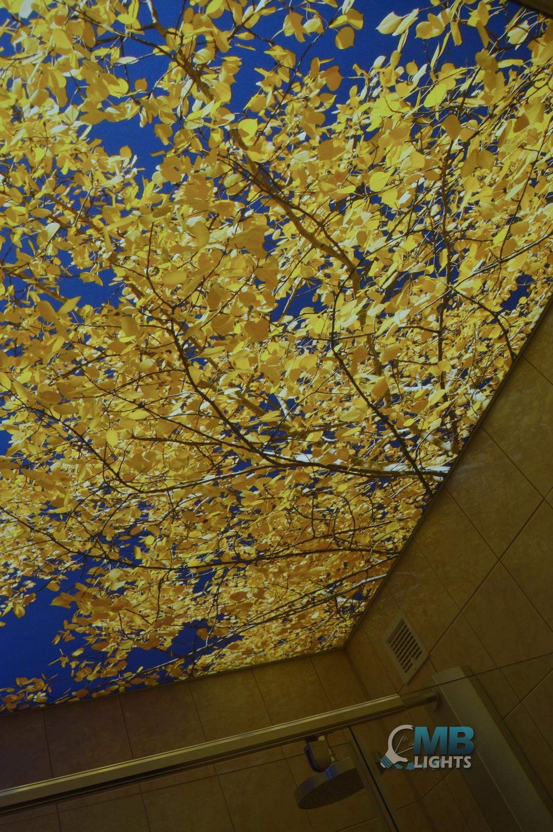 svetelný strop